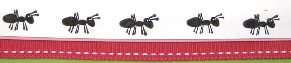 Go Aussie ants