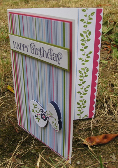 Striped Birthday (1)