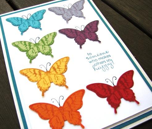 Papillon Potpourri (1)