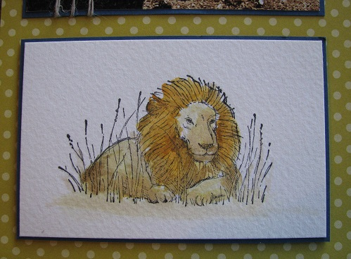 Boy Layout Lion Watercolour