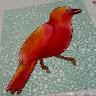 Stampin Up Collage Bird Card (9) (499x499)